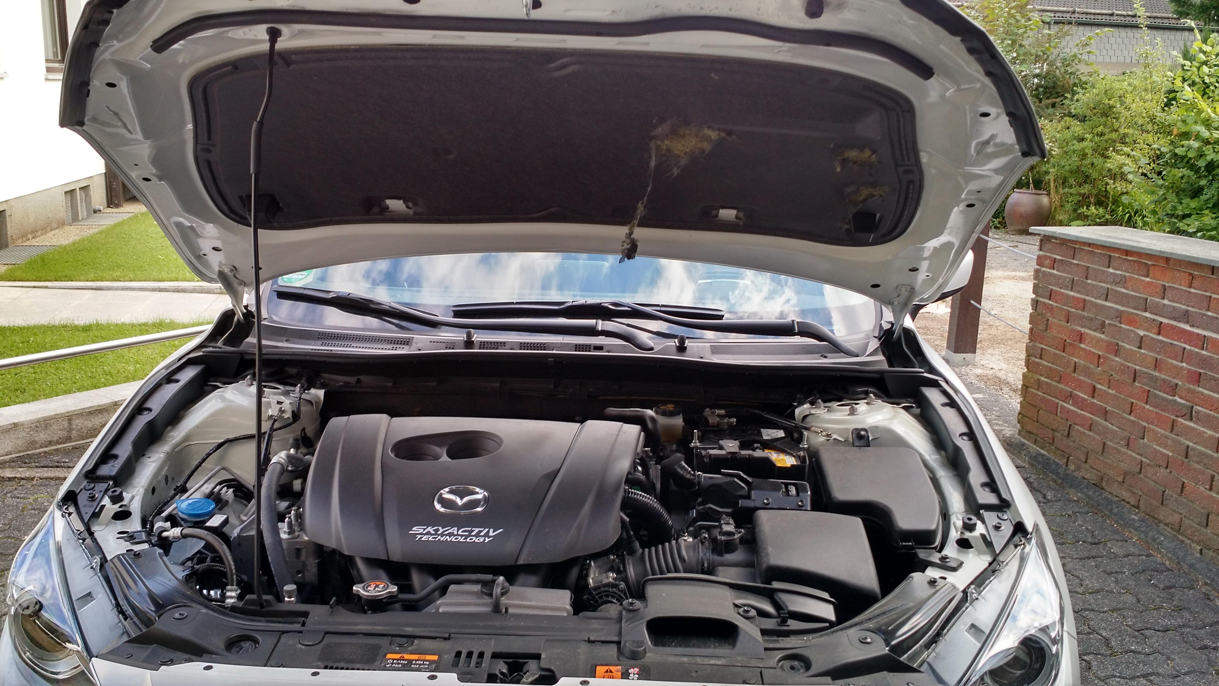 Dämmung unter der Motorhaube beschädigt - wodurch?